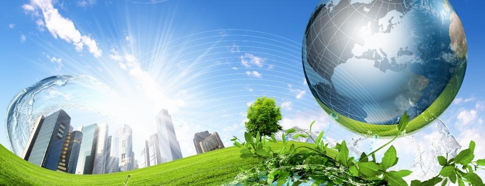 3 Ways to Make Your Business More Environmentally Friendly